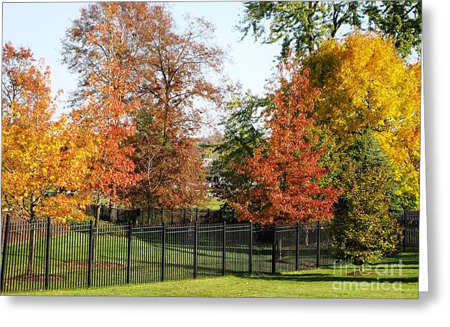 Greeting Card featuring the photograph Colors Of Fall by Judy Palkimas