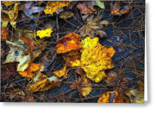 Greeting Card featuring the photograph Colors Of Fall by Ludwig Keck