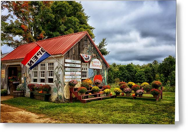 Colors Of Impending Fall Greeting Card by Tricia Marchlik