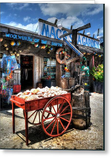 Colors Of Key West 3 Greeting Card by Mel Steinhauer
