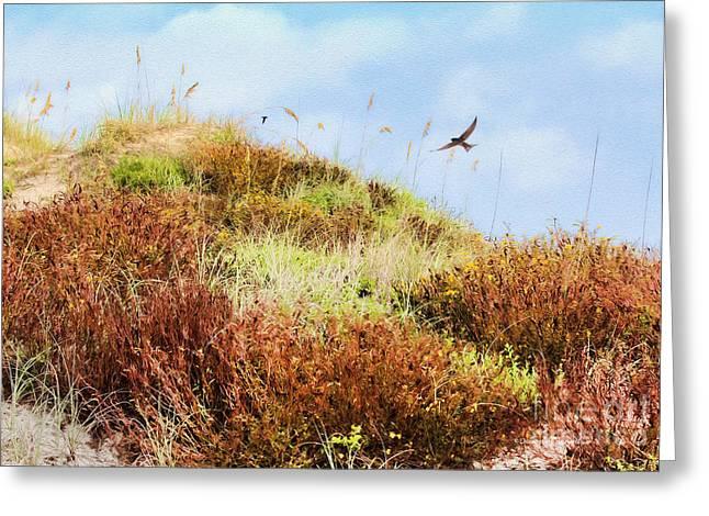 Colors Of Nature Greeting Card by Deborah Benoit