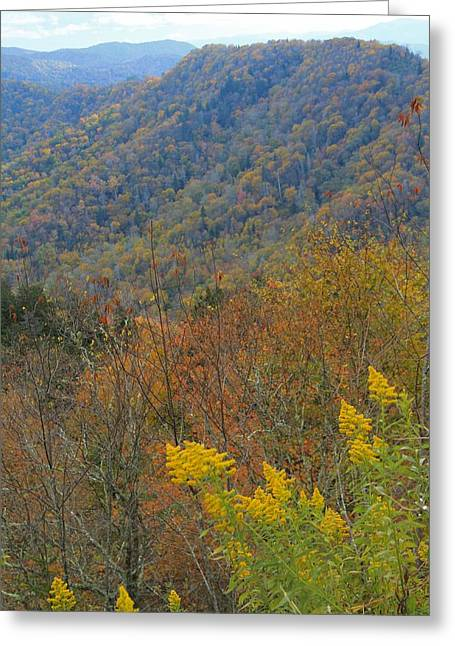 Colors Of October Greeting Card