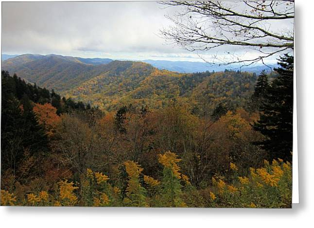 Colors Of October From Smoky Mountains Greeting Card