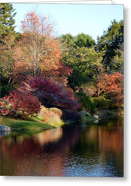 Colors Of Still Waters Glow Greeting Card by Lena Hatch