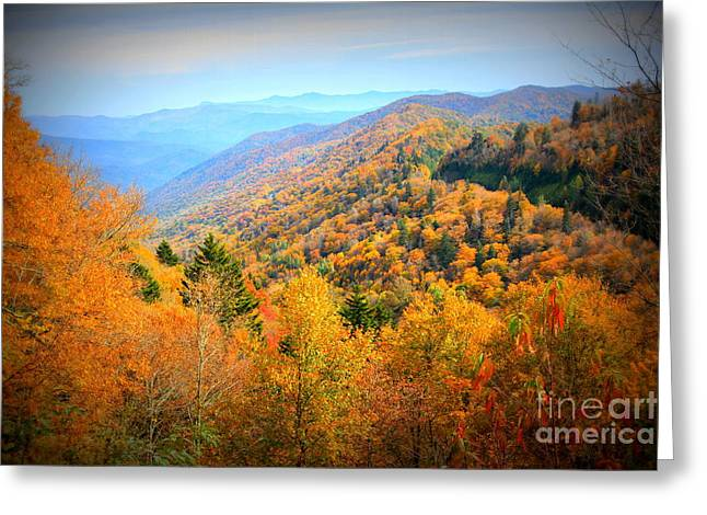 Colors Of The Smokies Greeting Card