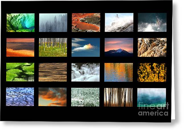 Colors Of Yellowstone Greeting Card by Clare VanderVeen