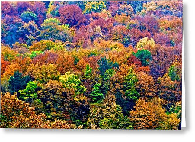 Colors To Winter 2 Greeting Card