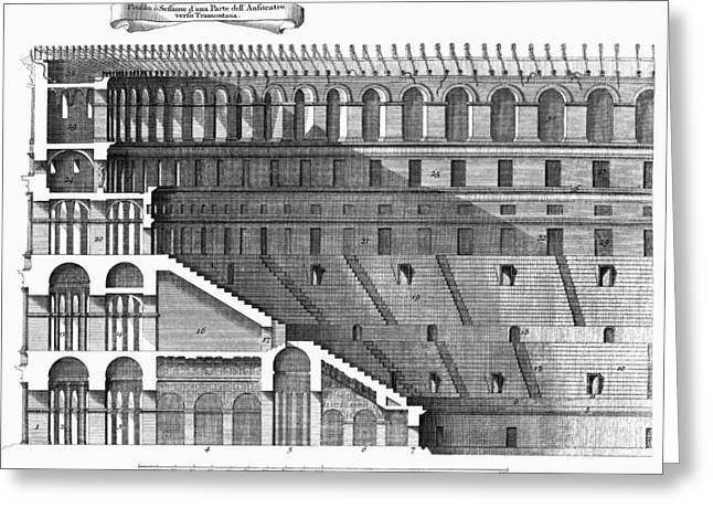 Colosseum: Cross-section Greeting Card