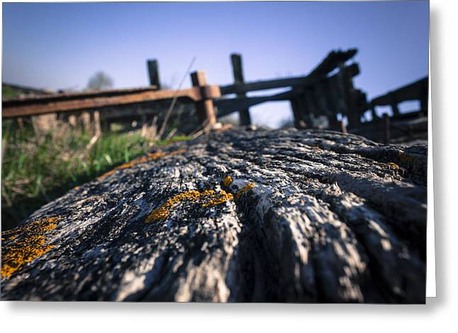 Greeting Card featuring the photograph Colour In Decay  by Stewart Scott