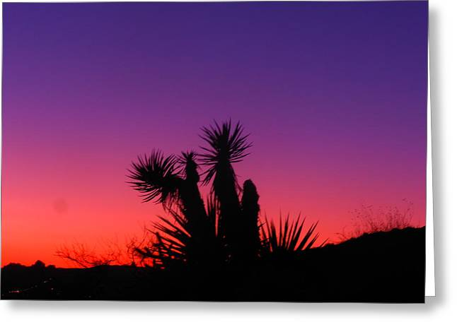 Colourful Arizona Greeting Card