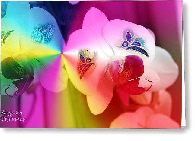 Colourful Orchids And Butterfies Greeting Card by Augusta Stylianou