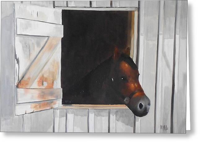 Colt At Barn Window Greeting Card