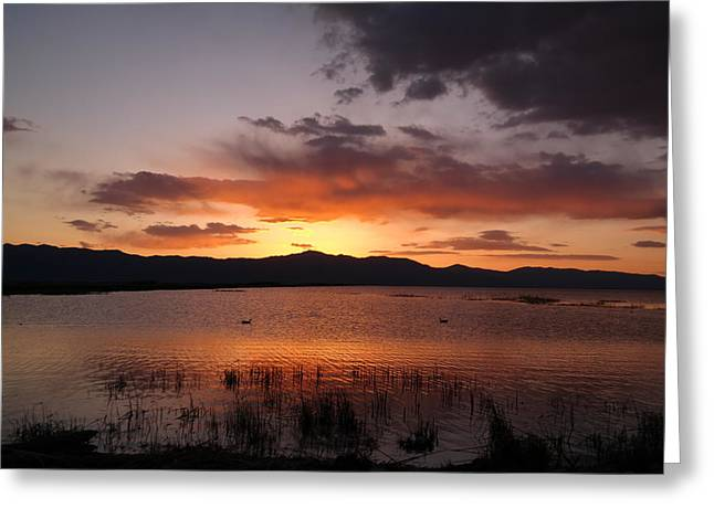 Columbia River At Dusk Greeting Card by Jeff Swan
