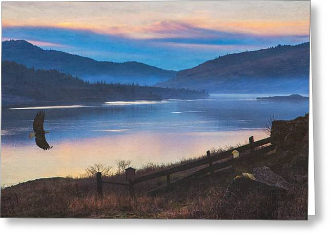 Columbia River Gorge Eagles Greeting Card by Angie Vogel
