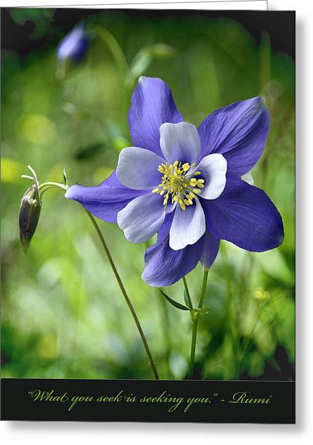 Columbine Card  Greeting Card