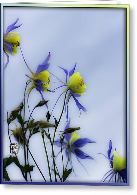 Columbines Greeting Card by Peter v Quenter