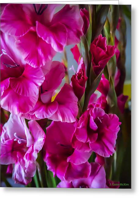Columns Of Colour Greeting Card