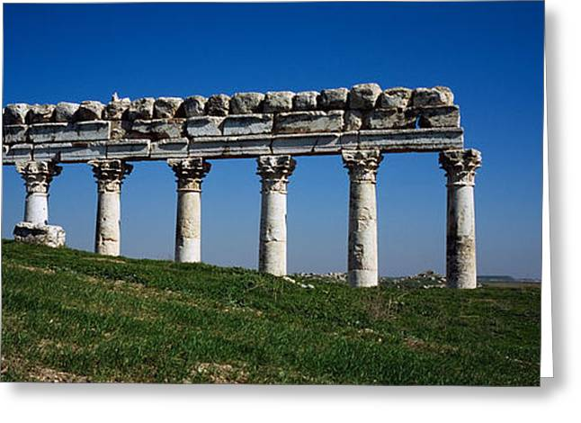 Columns On A Landscape, Apamea, Syria Greeting Card by Panoramic Images