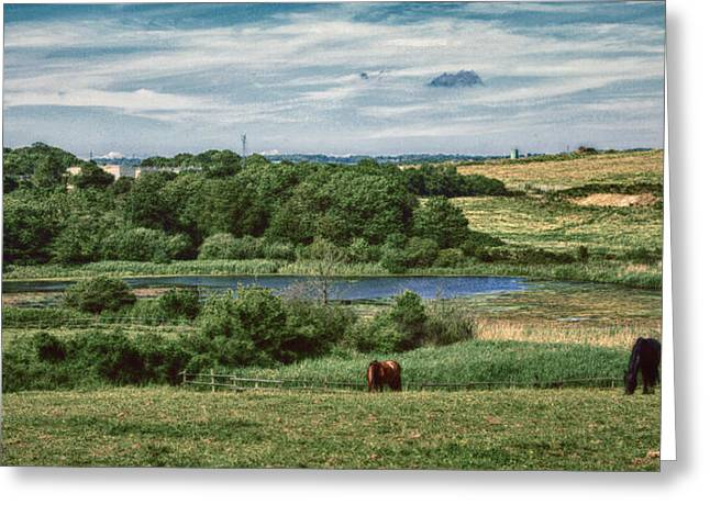 Combe Haven Valley Greeting Card by Sharon Lisa Clarke