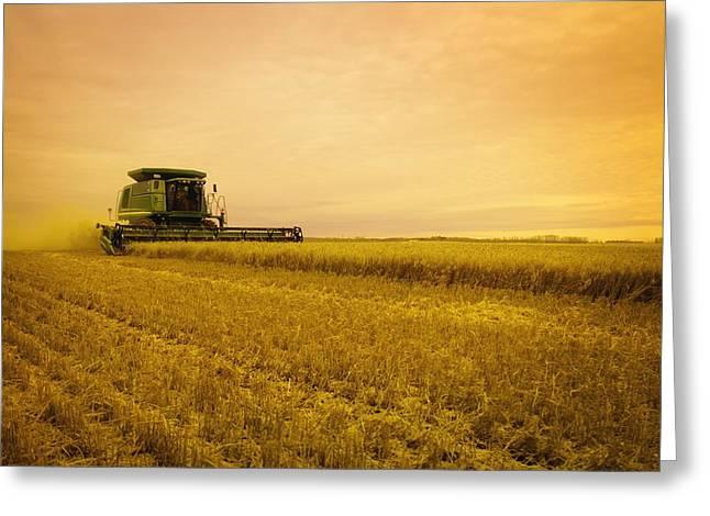 Combine Harvester Greeting Card by Darren Greenwood