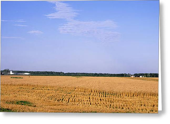 Combine In A Field, Marion County Greeting Card by Panoramic Images