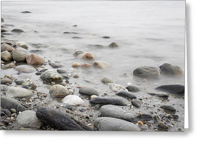 Greeting Card featuring the photograph Combing The Beach by Andrew Pacheco