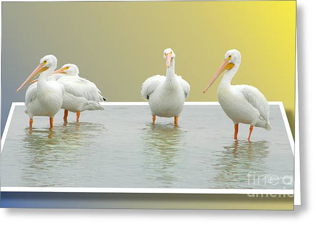 Come On In The Water Is Fine Greeting Card by Mariarosa Rockefeller