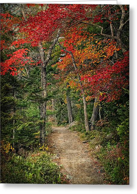 Come Walk With Me Greeting Card by Priscilla Burgers