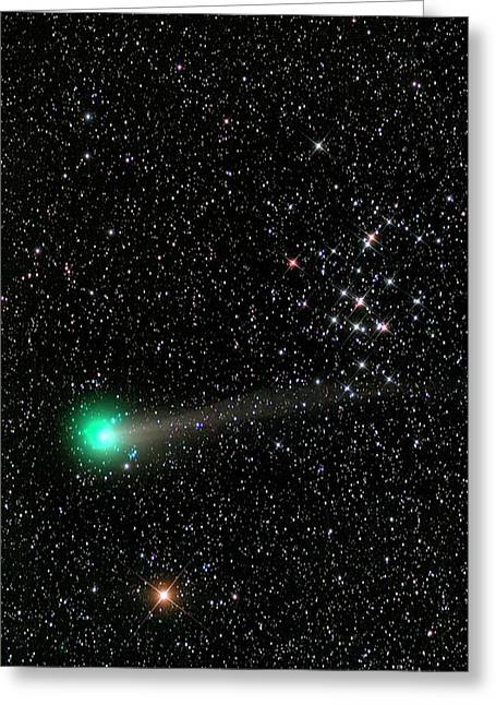 Comet C2013 R1 And Star Cluster M44 Greeting Card by Damian Peach