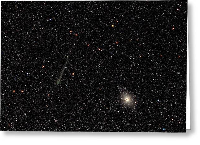 Comet C2014 Q1 And Centaurus A Greeting Card by Damian Peach