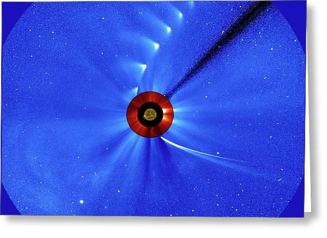 Comet Ison Greeting Card by Esa/soho/sdo/nasa
