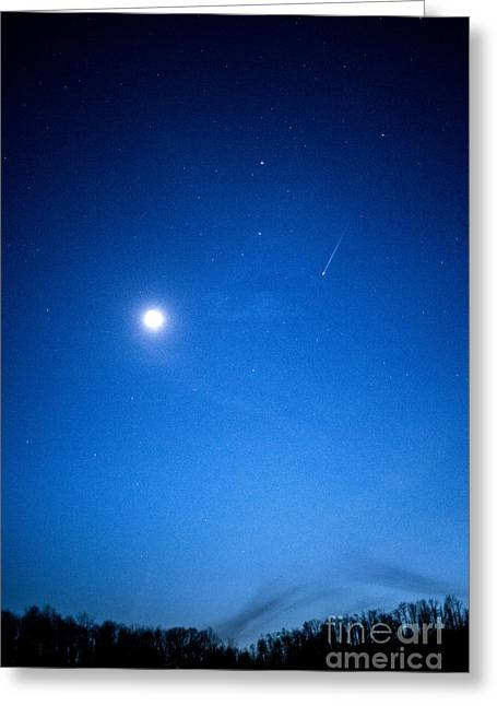 Comet Panstarrs Greeting Card by Thomas R Fletcher