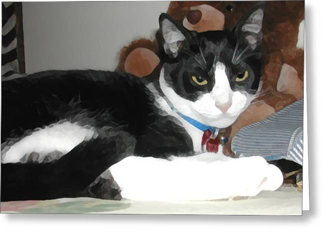 Comfy Kitty Greeting Card by Jeanne A Martin