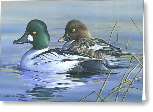 Common Goldeneye Greeting Card