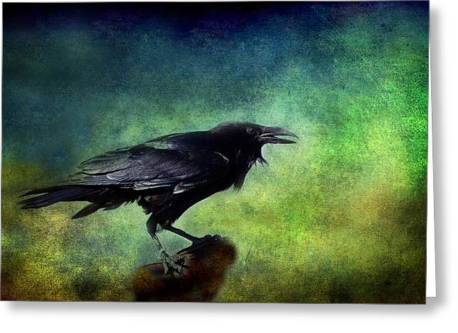 Common Raven Greeting Card
