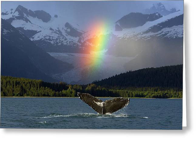 Composite Bright Rainbow Appears Over Greeting Card by John Hyde