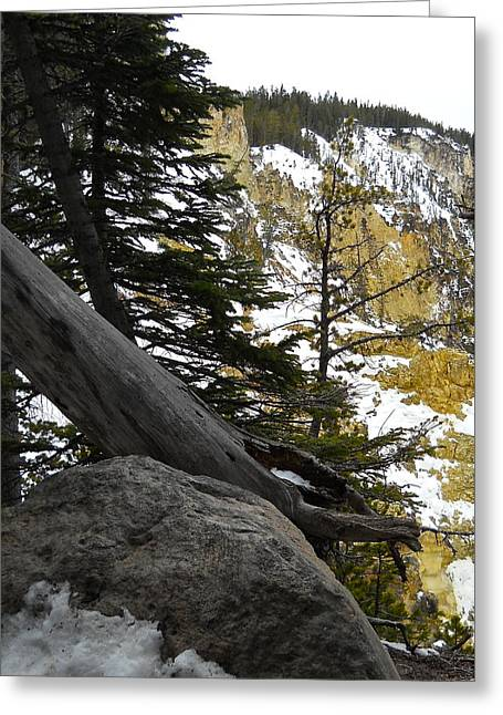 Greeting Card featuring the photograph Composition At Lower Falls by Michele Myers