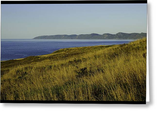 Conception Bay Greeting Card