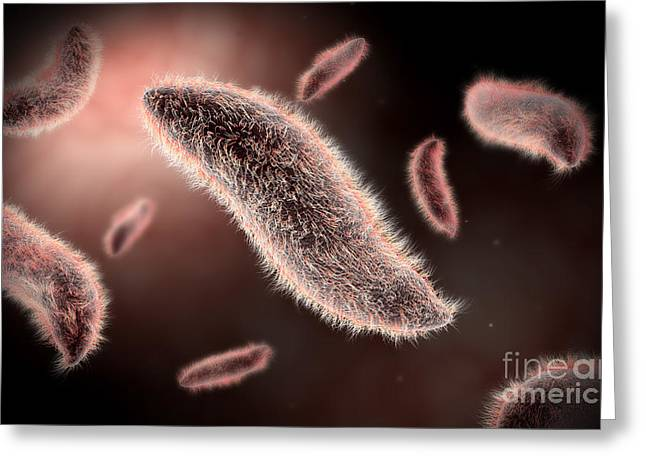 Conceptual Image Of Paramecium Greeting Card by Stocktrek Images