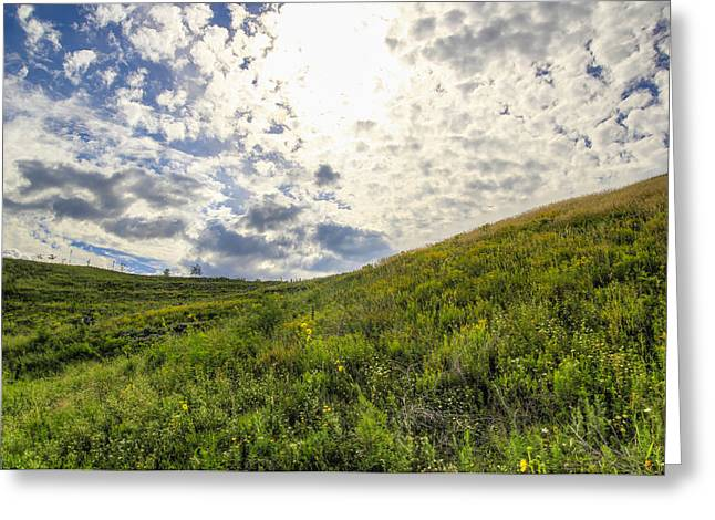 Concordia Bluff Greeting Card by Anna-Lee Cappaert