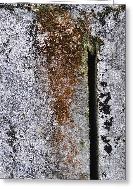 Concrete Abstract - Natures Beauty Greeting Card