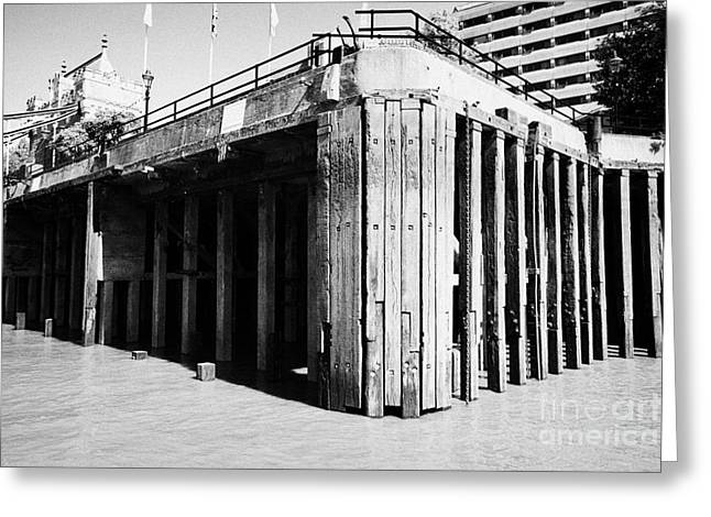 concrete piles and wooden stanchions on thames riverbank London England UK Greeting Card by Joe Fox