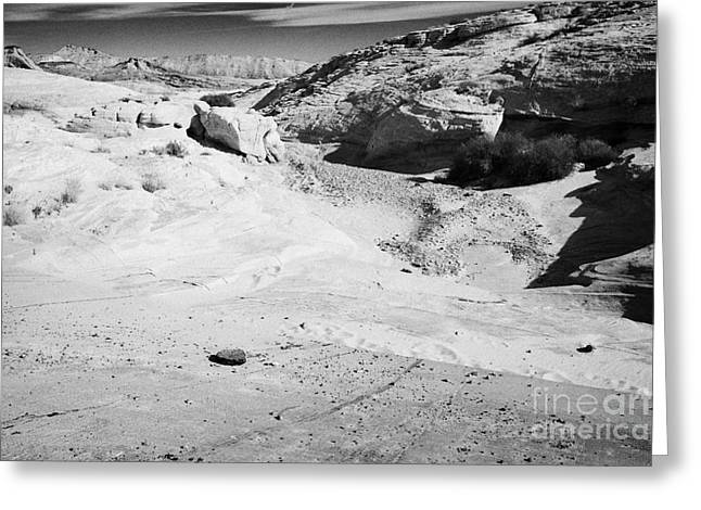 Concrete Reinforcement Of Flood Water Run Off From Road Through The Valley Of Fire State Park Nevada Greeting Card by Joe Fox