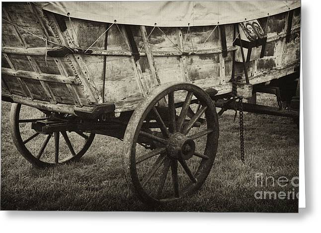 Conestoga Wagon Greeting Card by Paul W Faust -  Impressions of Light