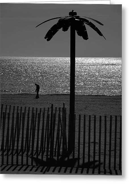 Coney Island 1 Greeting Card by Steven Richman