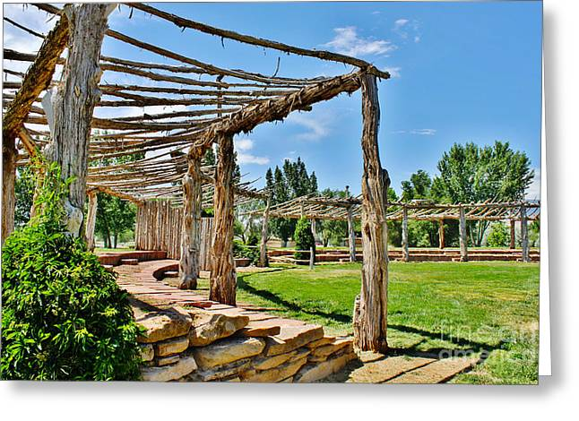 Confluence Park Delta Colorado Greeting Card by Janice Rae Pariza