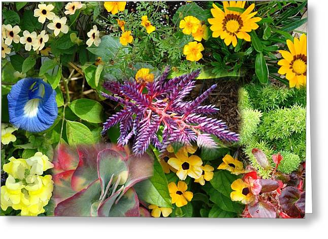 Confluent Flowers 3 Greeting Card