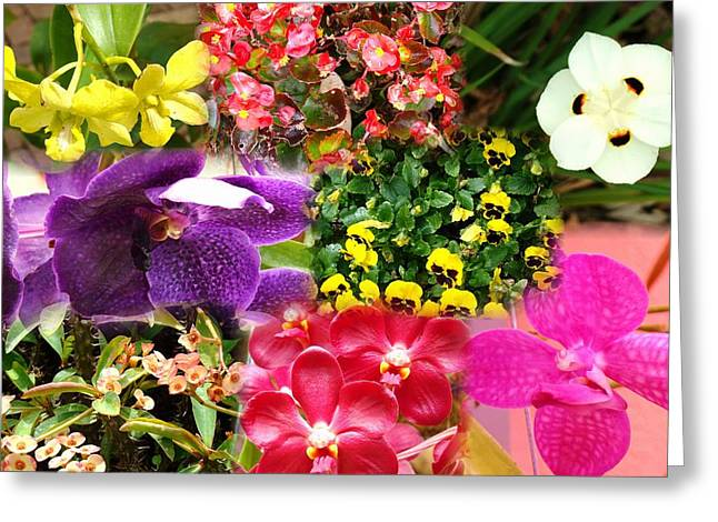 Confluent Flowers 9 Greeting Card
