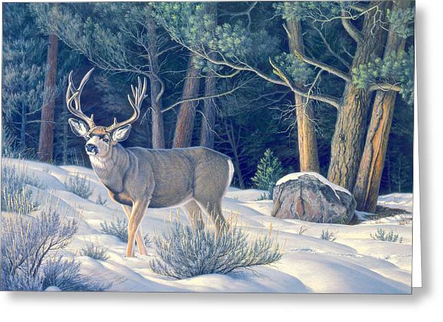 Confrontation - Mule Deer Buck Greeting Card