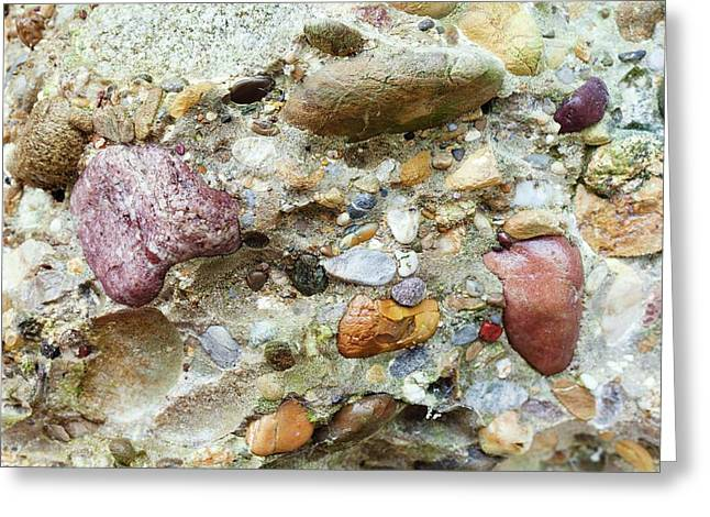 Conglomerate Rock Greeting Card by Dr Juerg Alean